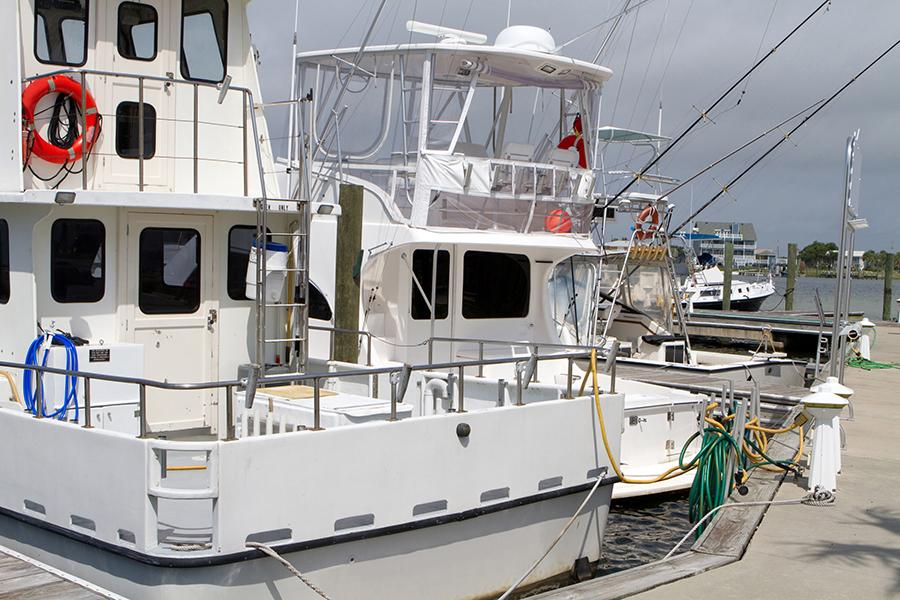 Fishing poles frozen bait fishing supplies for Fishing poles near me
